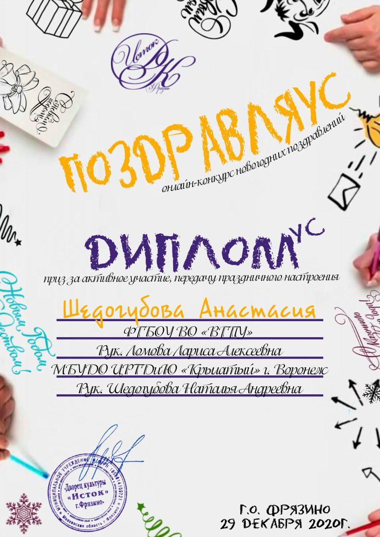 Диплом - Шедогубова