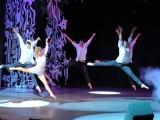 show-13